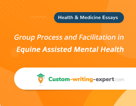 Group Process and Facilitation in Equine Assisted Mental Health Free Essay