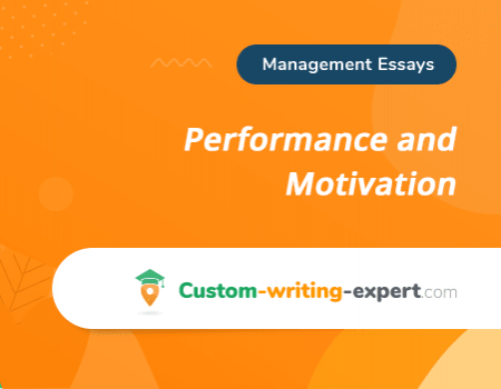 Performance and Motivation Free Essay